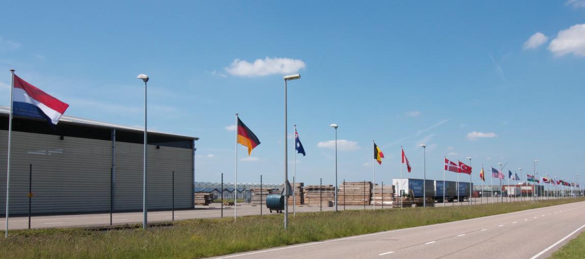 landen vlaggen parade